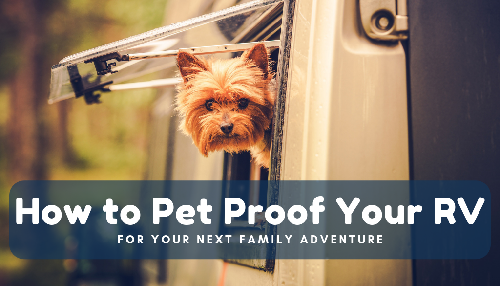 How to Pet-Proof Your RV for Your Next Family Adventure